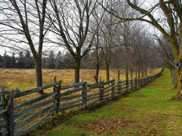 rustic fence - the boundary between two fields